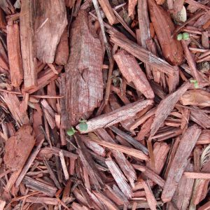 All You Need to Know About Garden & Landscape Mulching