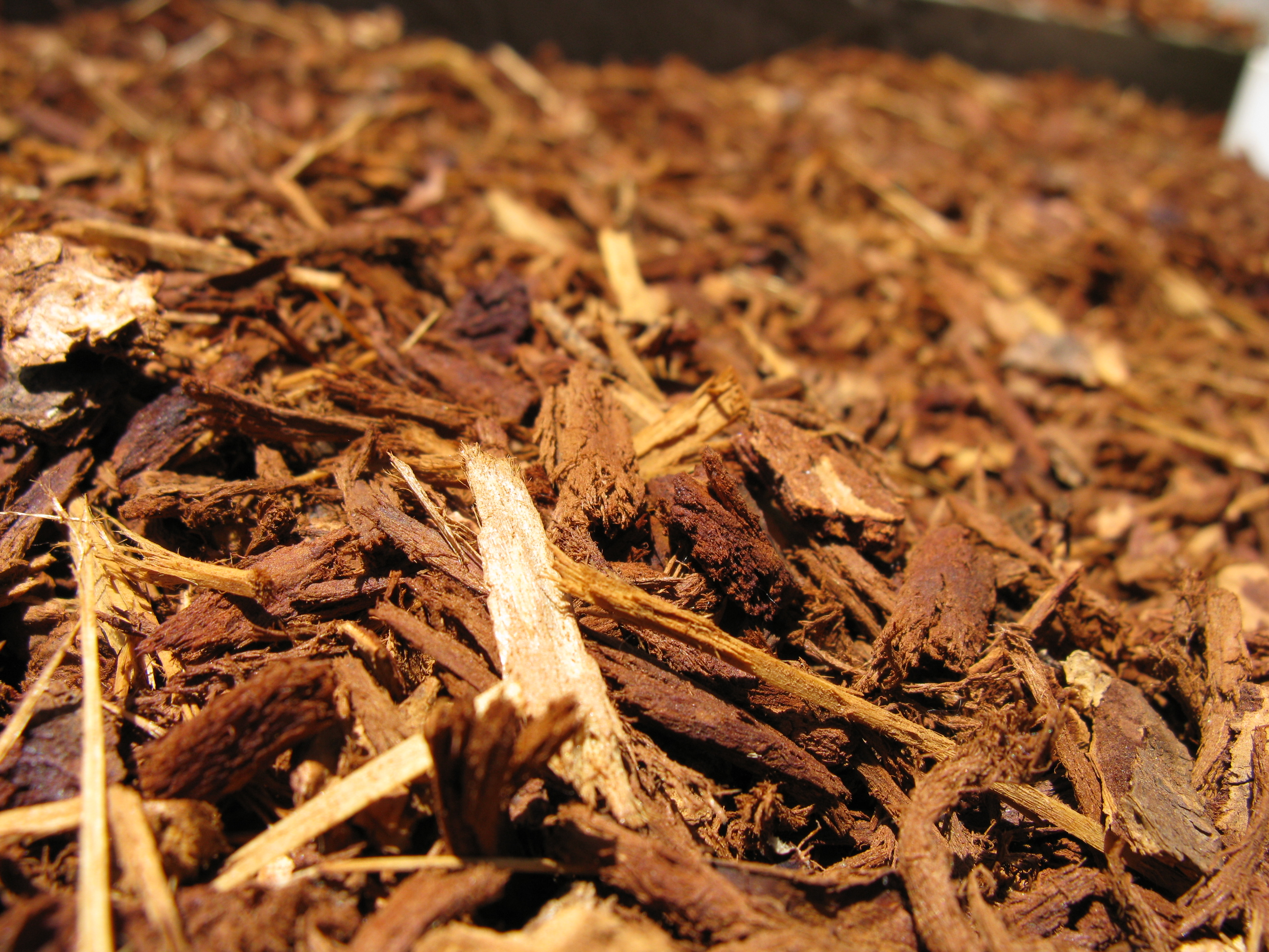 How to maintain mulch