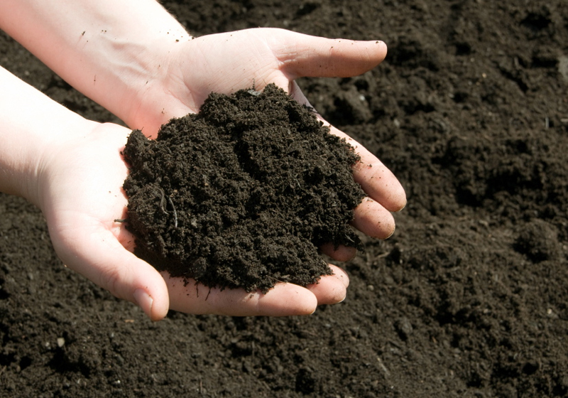 Your Guide to Gardening & Landscaping Soil - Frador